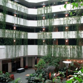 The interior of our Darwin Hotel.
