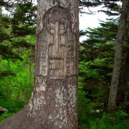 Juneau Tree