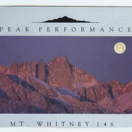 Whitney 55