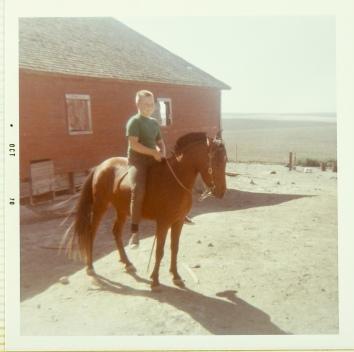 David on Horse